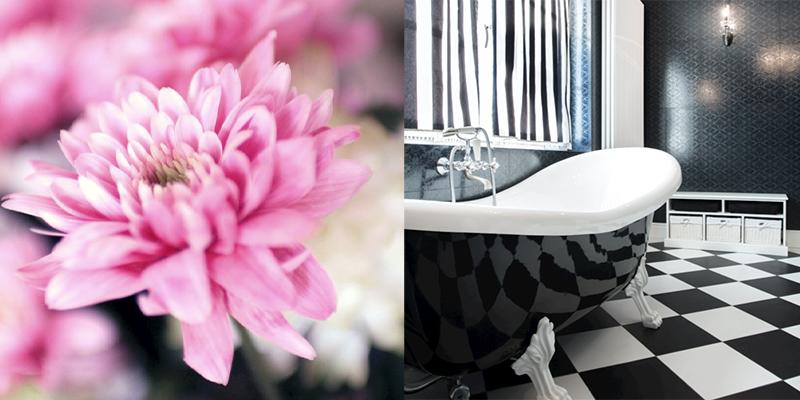 masterclass roze zwart wit